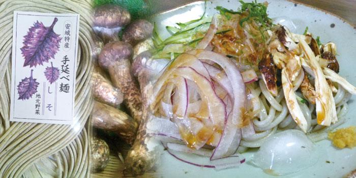 安城特産 地元野菜入 手延べ麺 「しそ」